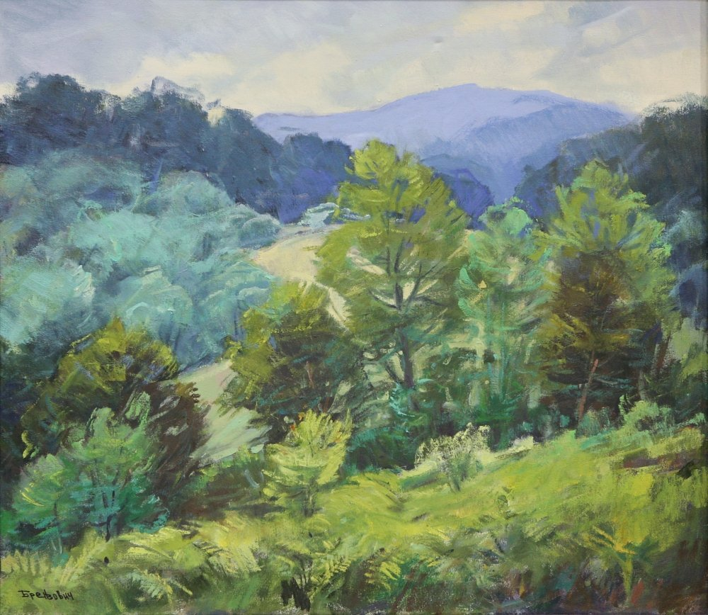 Green Carpathians