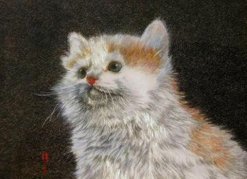 Кошеня
