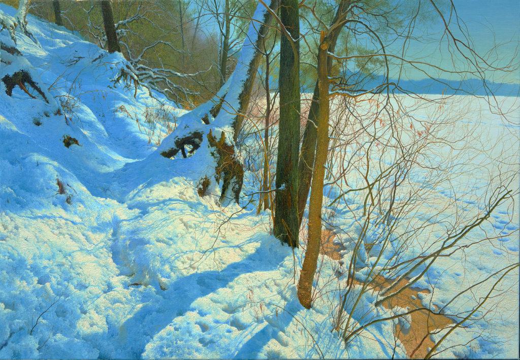 Зимовий берег
