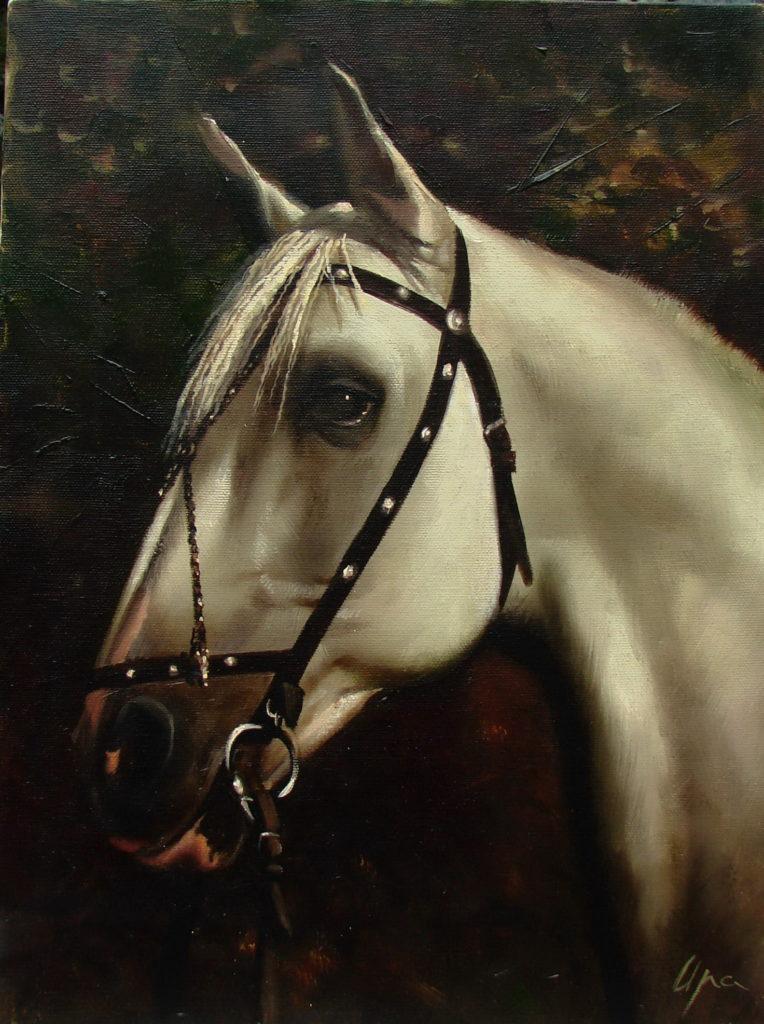 Етюд коня (5)