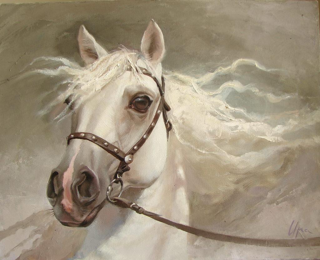 Етюд коня (4)