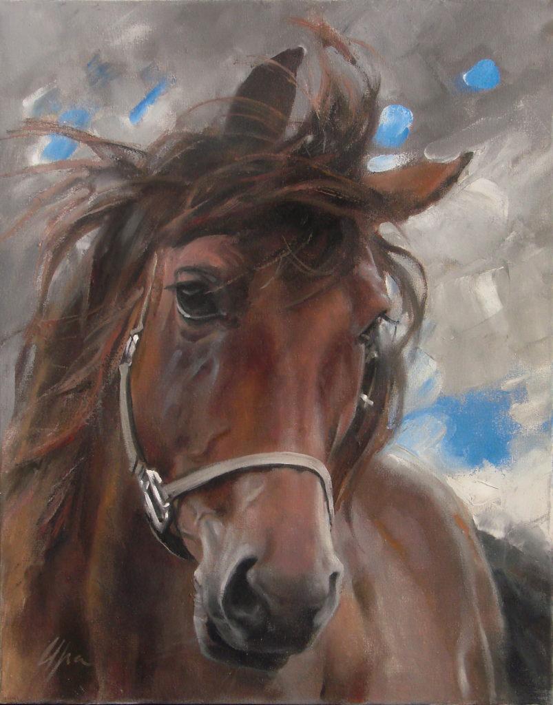 Етюд коня (3)