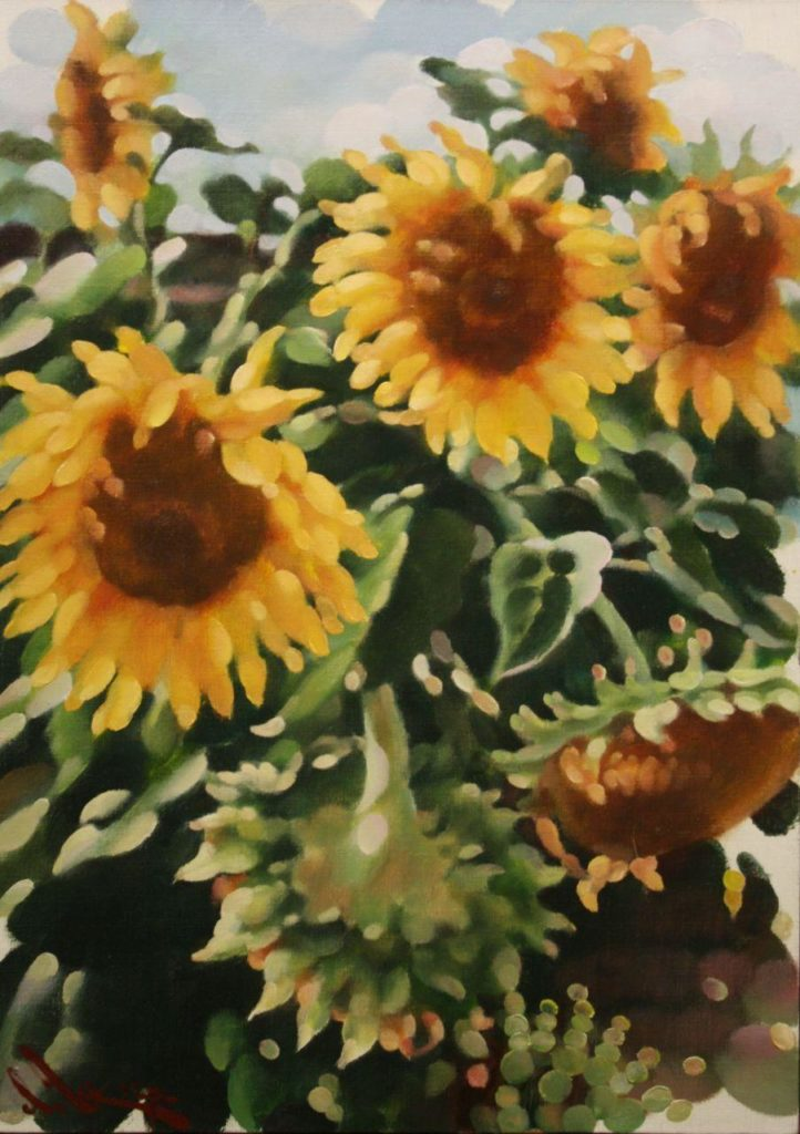 Цвітуть соняшники