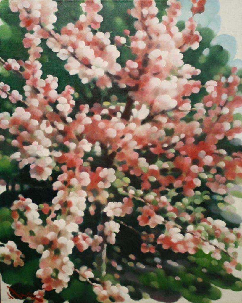 Цвіте райська яблуня